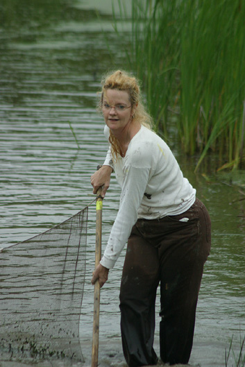 Seining at the wetlands on 10 June 2004